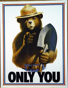 SMOKEY ONLY YOU PREVENT FOREST FIRE SIGN