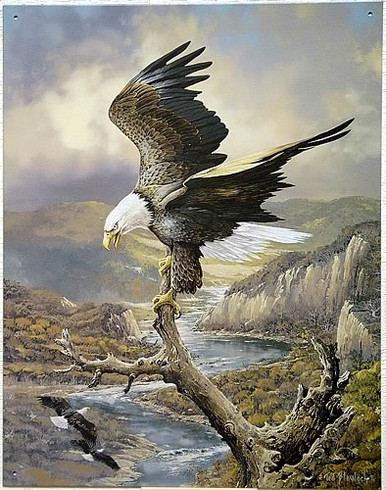 Photo of BAYLOCK EAGLE AT REST ON RIVER EXTRORDINARY GRAPHICS ALMOST BRING THIS EAGLE SIGN TO LIFE