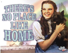Photo of WIZARD OF OZ - NO PLACE LIKE HOME BEAUTIFUL COLOR AND DETAIL MAKE THIS A GREAT ADDITION FOR ANY OZ FAN