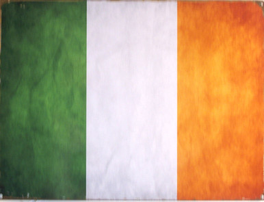 "ENAMEL SIGN MEASURES 16"" W X 12"" H ON HEAVY METAL HOLES IN EACH CORNER MAKE IT EASY TO MOUNT COLORS ARE MUTED AND HAS AN OLD IRISH FLAG LOOK"