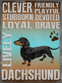 "DACHSHUND ENAMEL SIGN MEASURES 12"" X 16"" AND HAS HOLES IN EACH CORNER FOR EASY MOUNTING GREAT COLORS AND DURABLE ENAMEL FINISH MAKE THIS SIGN A MUST HAVE FOR DACHSHUND LOVERS."