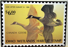 Photo of CANADA GOOSE, OHIO DUCK HUNTING STAMP, BEAUTIFUL COLOR AND DETAILS