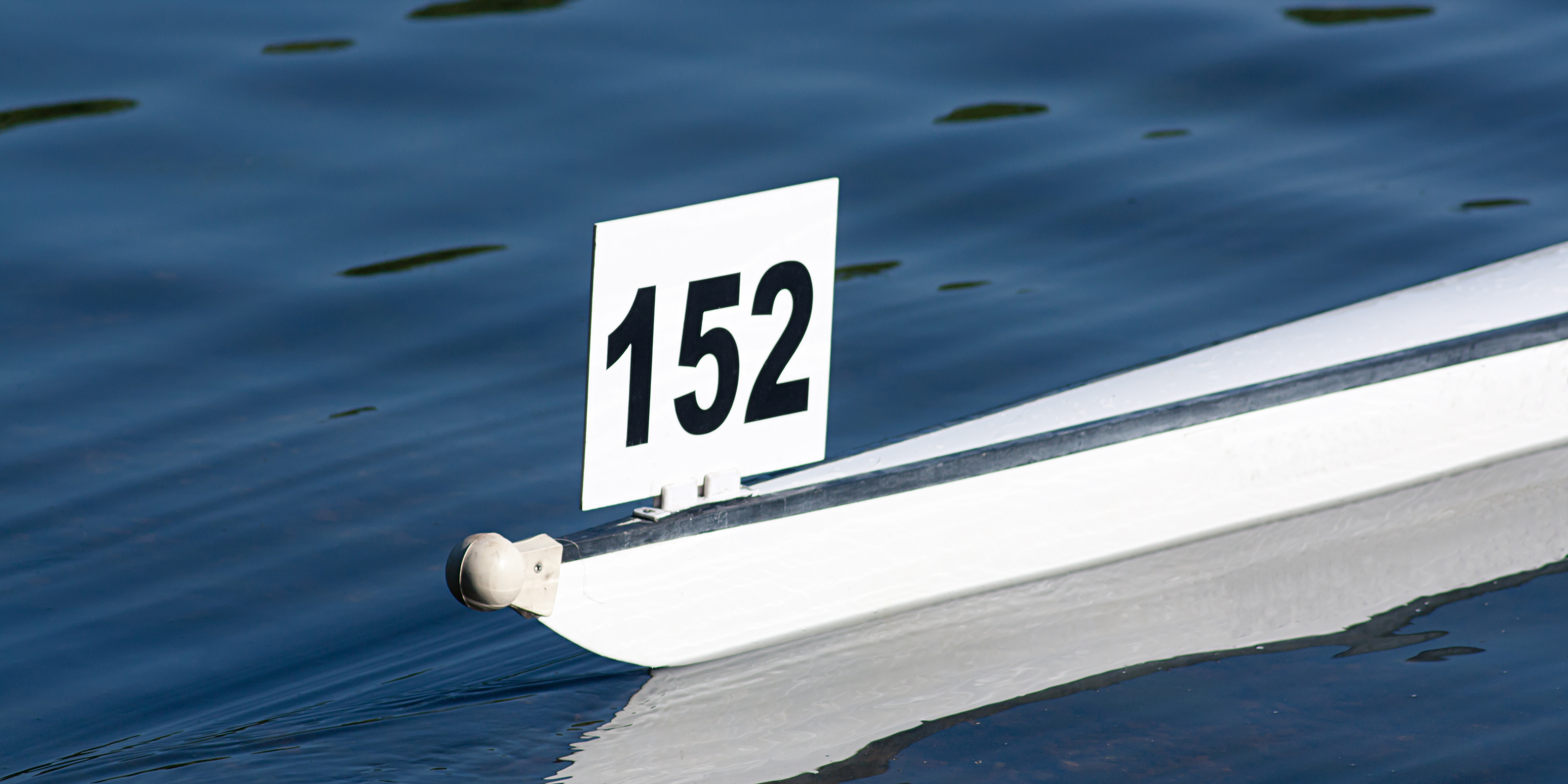 The Regatta Collection: Image of a Bow Number.