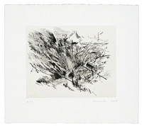 JULIE MEHRETU Untitled (Amulets) 2008, One (1) color drypoint with chine-colle. Hand signed. Unframed.