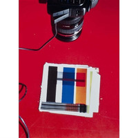 WADE GUYTON, IMG 1919.JPG, 2013, Digital chromogenic print, Signed, Numbered