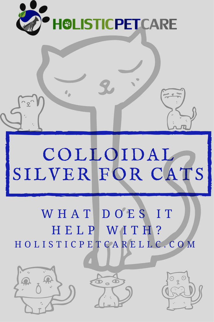 colloidalsilver-for-cats.png