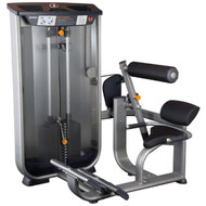 Torque Fitness Commercial Low Back Machine MBE