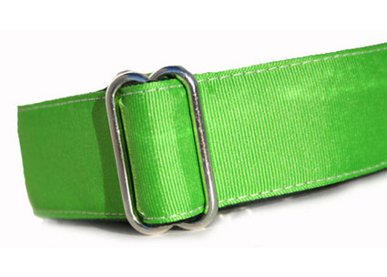 lime green grosgrain ribbon martingale dog collar