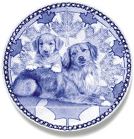 Nova Scotia Duck Tolling Retriever Puppy Blue Plate