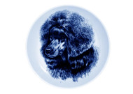 Poodle (Black) Face Danish Blue Dog Plate