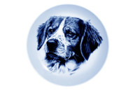 Brittany Spaniel Face Danish Blue Dog Plate