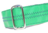 Sailcloth Dog Collar in Salty Dog Green