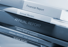 Algeria Corporate Registry Extract