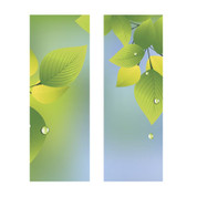 Summer Leaves & Raindrops Banner