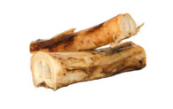 Buffalo Metatarsol Bone