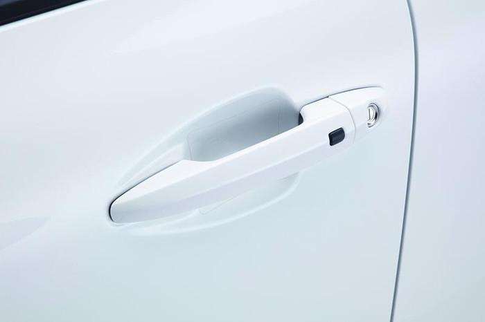 2017 Kia Niro Door Pocket Protector Films (M006)
