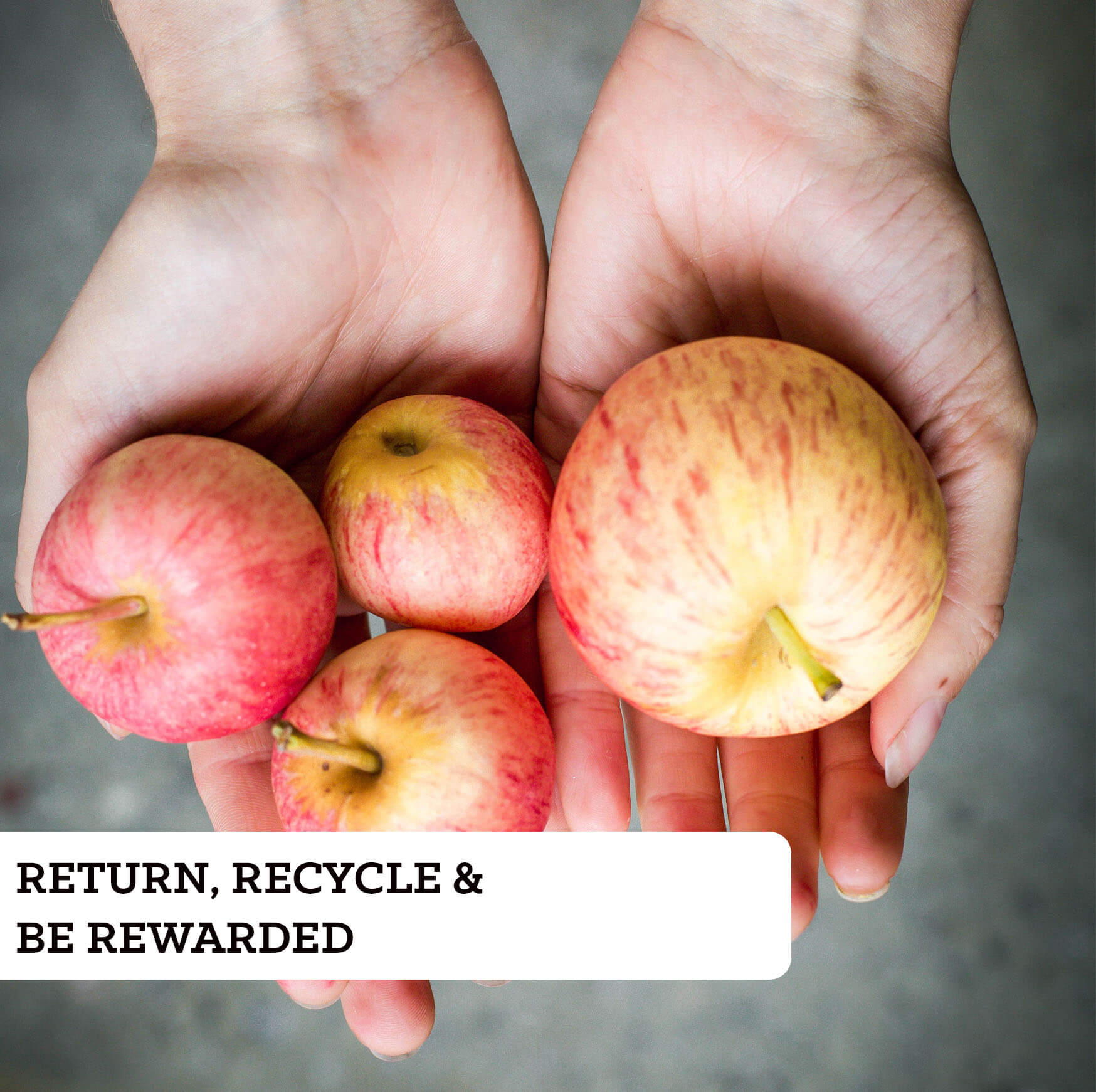 Return, recicle and be rewarded