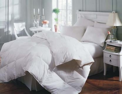 Mackenza All Season Down Comforter