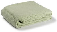 Charisma Cotton Throw- Celadon
