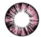 Geo Xtra Forest Pink WTB67 14.8mm