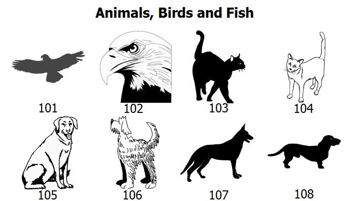 animal-graphics-1.jpg