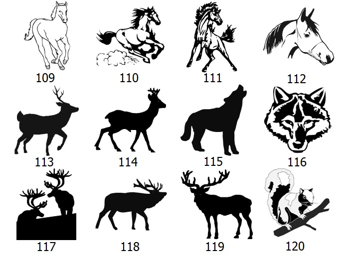animal-graphics-2.jpg