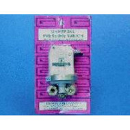 "Len Gordon 1/8"" NPT Stainless Pressure Switch 21Amp"