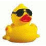 Cool Duck - with Sunglasses