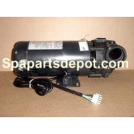 Master Spas 4hp, 1spd Sta-Rite / Pentair X321150