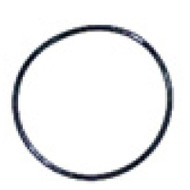 "O-ring for Waterway 2"" valve  805-0143"