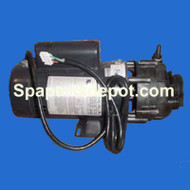 Master Spas 4hp, 2spd Sta-Rite/Pentair - X321160