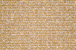 BAYSIDE BOUCLE-GOLDEN REEF 11542