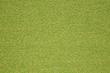 ESSENCE-GRASS 11687