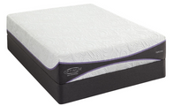 Brand New Sealy Optimum Elation Gold Ultra Plush Mattress Set.