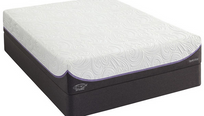 Sealy Optimum Inspiration Gold Firm Mattress by Appointment.