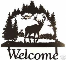 Elk Bull in Wilderness Welcome Sign