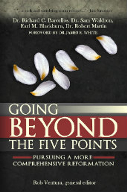 Going Beyond the Five Points: Pursuing a More Comprehensive Reformation (Paperback)