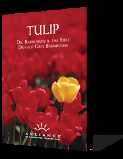 Tulip (mp3 downloads)