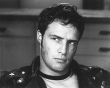 This is an image of 186151 Marlon Brando Photograph & Poster