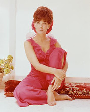 This is an image of 241383 Suzanne Pleshette Photograph & Poster