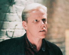 This is an image of 248029 Gary Busey Photograph & Poster