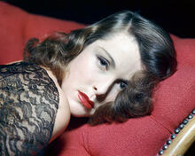 This is an image of 248095 Frances Dee Photograph & Poster