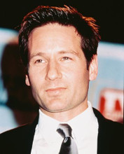 This is an image of 244813 David Duchovny Photograph & Poster