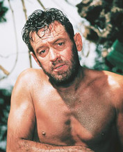 This is an image of 247376 William Holden Photograph & Poster