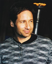 This is an image of 250634 David Duchovny Photograph & Poster