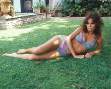 This is an image of 256973 Jacqueline Bisset Photograph & Poster