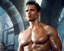 This is an image of 278450 Arnold Schwarzenegger Photograph & Poster