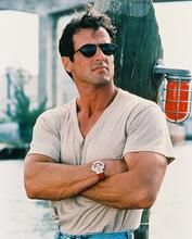 This is an image of 213691 Sylvester Stallone Photograph & Poster