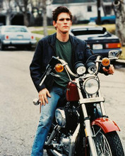 This is an image of 213851 Matt Dillon Photograph & Poster