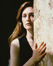 This is an image of 216591 Julianne Moore Photograph & Poster